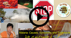 ملیریا کی علامات٬ وجوہات اور علاج