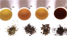 Crazy Things You Didn't Know About Tea