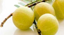 Amazing Benefits of Gooseberry (Amla)