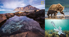 National Geographic unveils contenders for the best nature photographs of the year