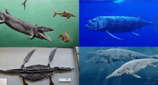 Incredible Sea Monsters That Once Ruled The Oceans