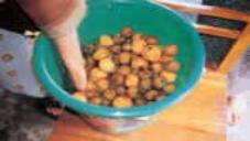 Lemon Pickle Nimboo Ka Achar