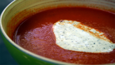 Fresh Tomato Cream Sauce recipe